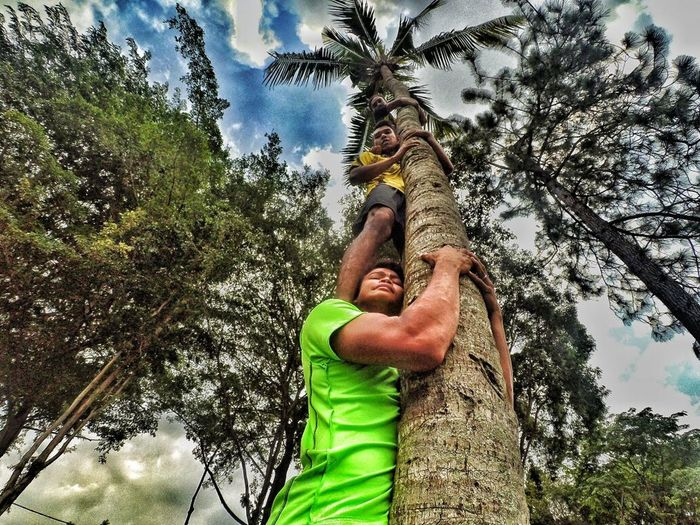 TeamworkMakesTheDreamWork tree Green Color Growth One Person Waist Up Nature Only Men Real People Grass Men One Man Only Adults Only Palm Tree Outdoors Day Tranquility Low Angle View Sky Adult People