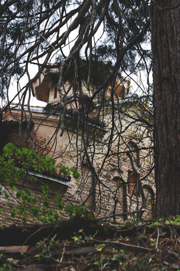 A view to Boyana church through trees. Ancient Architecture Art Art History Balkans Basilica Boyana Building Bulgaria Church Culture Europe Exterior History Landmark Medieval Medieval Architecture Monument Old Orthodox Orthodox Church Sightseeing Spring Travel Destinations Trees
