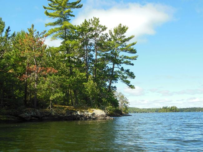 Landscapes With WhiteWall Landscape_Collection Island Life Island View  Lake Lake Vermilion North Woods  Northern Minnesota Upnorth Mncabin Minnesota Nature Tree_collection  Nature_collection Nature Photography