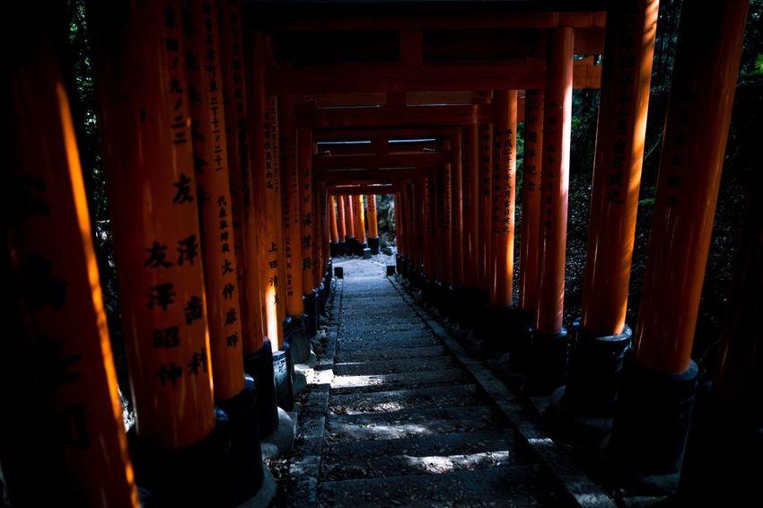 Inari. Canon. 6D Sigma 24mm 1.4 Japan Canon Sigma Canon 6D Inari