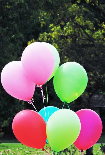 Multi colored balloons balloon