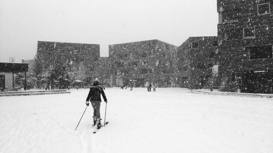 winter wonderland 🌬