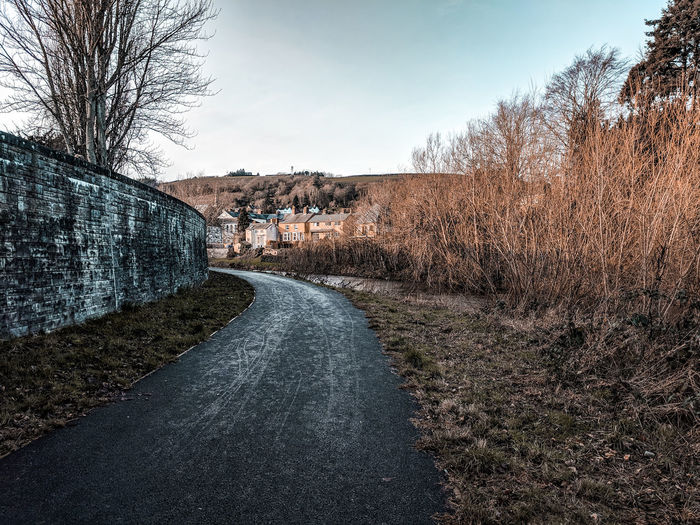 Road and wall amidst bare trees against sky