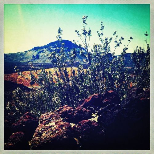 Parque Nacional de El Teida - Tenerife - Canarias Traveling Shootermag Movilgrafias Gf_spain