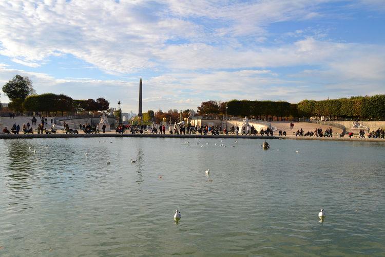 Ducks swimming in lake against sky