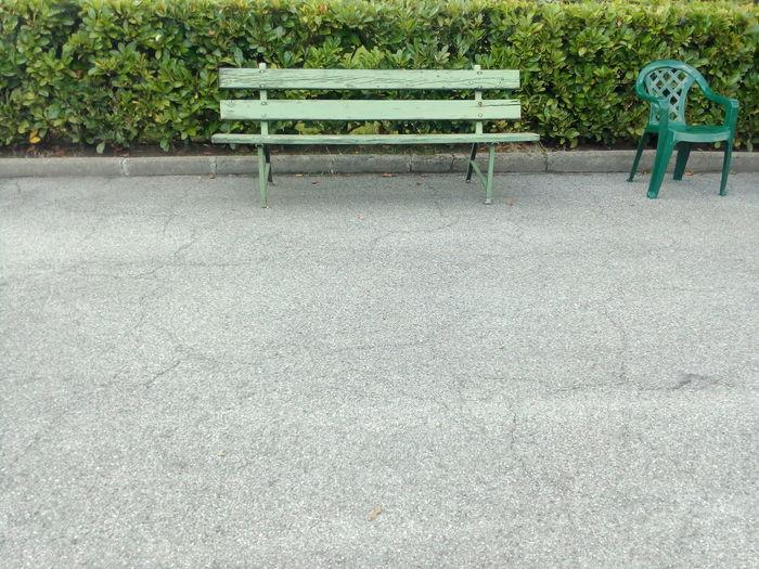 Place To Sit Benchinthepark Seat Bushes No People