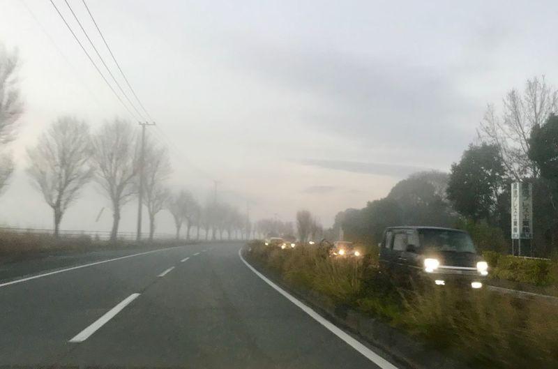 Transportation Mode Of Transportation Road Car Motor Vehicle Tree Plant