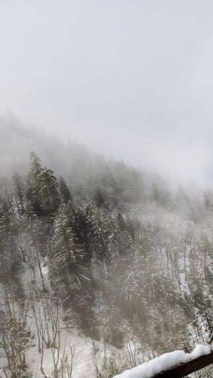 Snow Storm in
