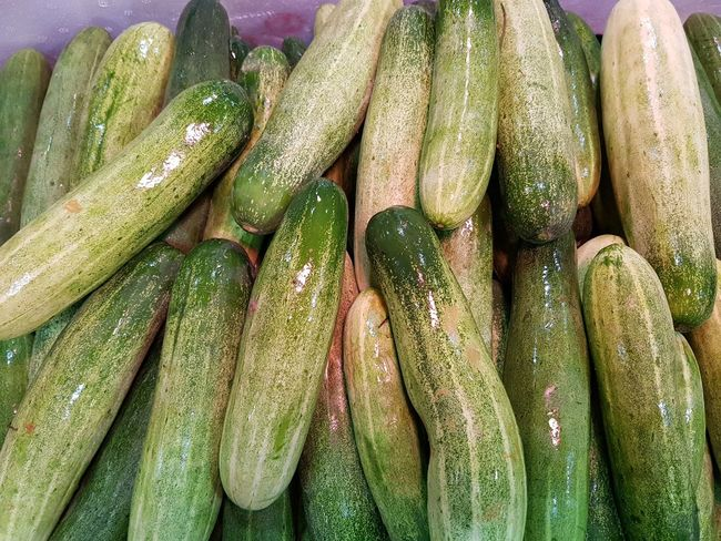 Cucumber is a widely cultivated plant in the gourd family, Cucurbitaceae. It is a creeping vine that bears cucumiform fruits that are used as vegetables. There are three main varieties of cucumber: slicing, pickling, and seedless. Cucumber Cucumbers Cucumber Plant Vegetable Healthy Eating Food And Drink Freshness Market Retail  Food For Sale Abundance Raw Food Green Color High Angle View Large Group Of Objects Backgrounds Day Outdoors Full Frame Close-up No People Farmer Market