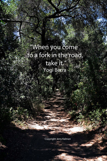 A sun dappled trail in #Fallbrook at the #SantaMargaritaEcologicalReserve and a great #YogiBerra quote. If this #quotograph resonates with you, please feel free to share with others Ecological Reserve Pattern Q Quotograph Smeraldo Sundappled Sunset Yogi Bear