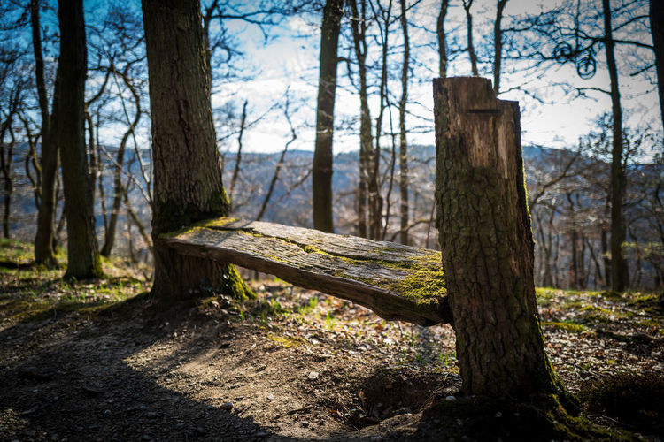 Boppard, Germany Benches Boppard Trekking Nature Spring