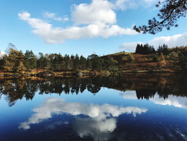 Stunning Lake District Reflection Sky Tree Water Cloud - Sky Lake Plant Tranquility Symmetry Waterfront Tranquil Scene Nature Beauty In Nature Scenics - Nature No People Standing Water Outdoors Growth Reflection Lake