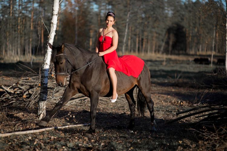 A young woman wearing a red dress rides a horse in the evening in the soft sunlight