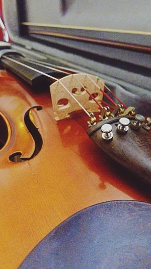 Music Musical Instrument Musical Instrument String String Instrument No People Classical Music Day Violin My Love Violin Violinista Violinist Violins Violin Practice Violin Soul Violin Player Violinists Violinkey Violinistinprogress Musical Instruments Music Is Life Music Is My Life Music Time Music Instrument Musical Evening Classical Music