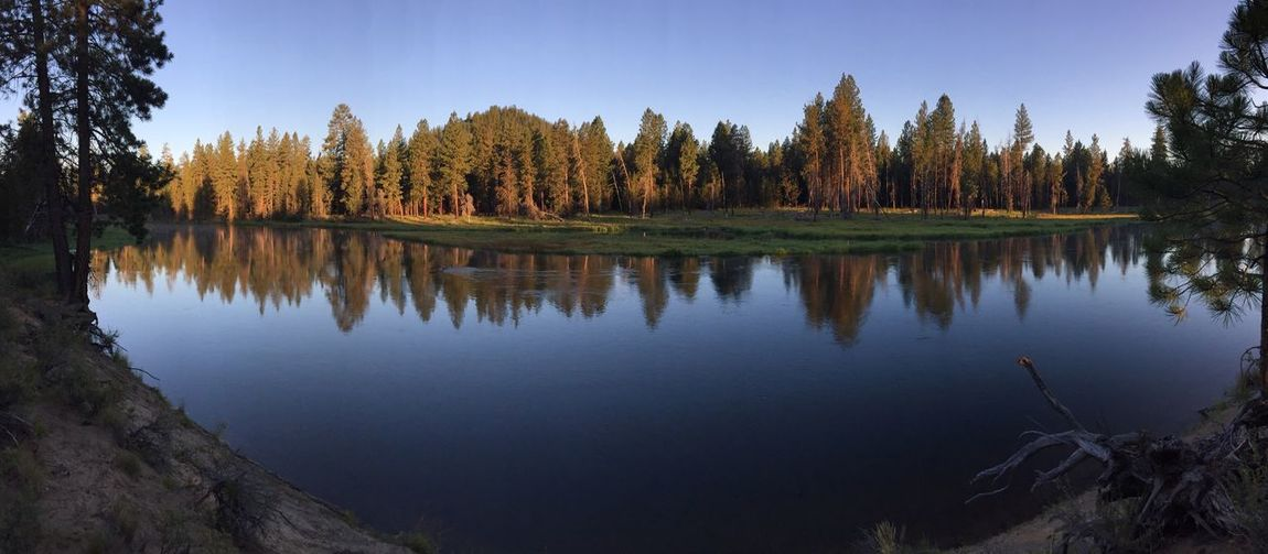 Panorma of morning on the Deschutes River EyeEm Selects Reflection Tree Lake Nature Water Forest Tranquility No People Outdoors