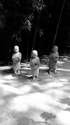 Blackandwhite Black And White Black & White Bamboo Statue Monk  Monks No People