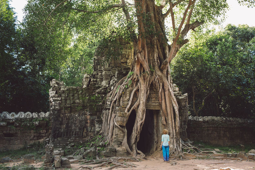 Siem Reap Cambodia Angkor Curly Hair Girl Tree Plant Real People Nature Rear View One Person Day Growth Tree Trunk Trunk Lifestyles Leisure Activity Forest Land Full Length Architecture Casual Clothing Women Standing Outdoors