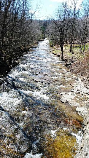 Photo prise le 19 Avril2016!Rivière du primtemps Nature Rivières Forest Primtemps PhotosophLav Mesphotos Tranquility Quebec Mes Photos EyeEmNewHere