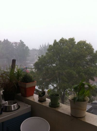 Raining!!!