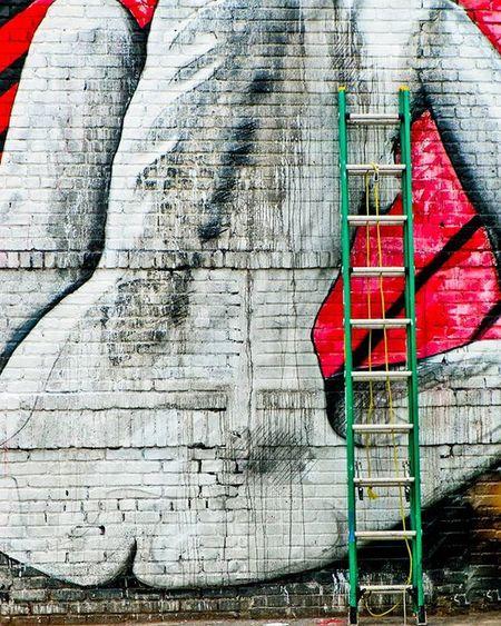 Curves the beauty of a woman! Streetart BuskwickArtists Ladder Brooklyngraffiti Brooklynstreets Woman Curves Onlyinbrooklyn Graffiti