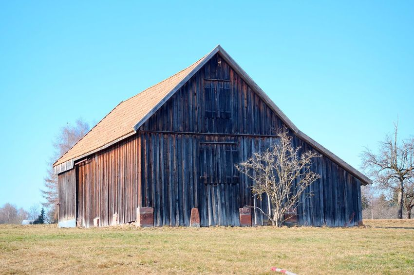 Cabin Blue Architecture Built Structure Clear Sky Barn No People Building Exterior Grass Nature Day Outdoors Sky