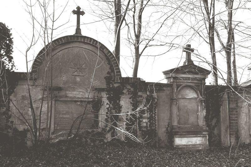 Old Cementary Cmentarz Dead Death