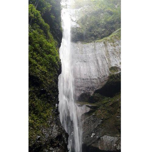 Air terjun Madakaripura - Probolinggo Exploreindonesia Loveindonesia Loveindonesianature Neverstopexploring  Nature Waterfall Backpacker Journey Jomblopetualang