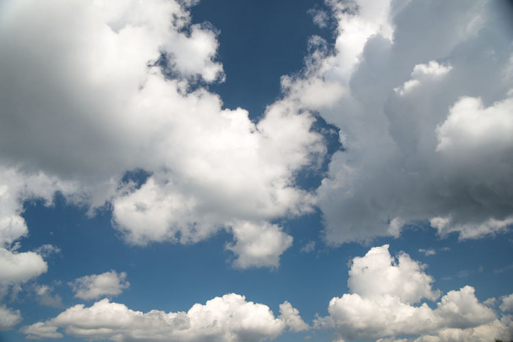 soft clouds and blue sky, white background Cloud - Sky Sky Beauty In Nature Low Angle View Tranquility Scenics - Nature Nature Backgrounds No People White Color Day Tranquil Scene Outdoors Idyllic Cloudscape Blue Full Frame Sunlight Environment Meteorology