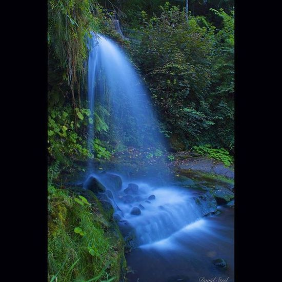 """Westquarter Glen Waterfall. ISO 100, f18 , 13""""sec. Princely_shotz Nature_sultans Ig_shutterbugs Ig_captures Igbest_shots Ig_supershots Loves_Scotland Nature_sultans Nature_shooters Ig_landscapes Bnw_captures Bnwscotland Insta_Scotland Loves_Scotland Ig_shots_magic Master_shots Majestic_earth Special_shots Landscape_lovers Ic_water Ig_bliss Britains_talent"""
