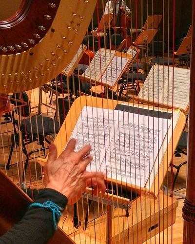 Las manos que tocan un Arpa , más que bellas son mágicas. Esos 10 dedos en contacto con las cuerdas tienen una musicalidad difícil de encontrar en otros instrumentos. Además, el arpa es uno de los instrumentos musicales más bellos, y con más Historia . Esta fotografía la he tomado en los ensayos de la Orquesta Sinfonica Verum de @verumbodegas en su debut en el AuditorioNacional de Madrid