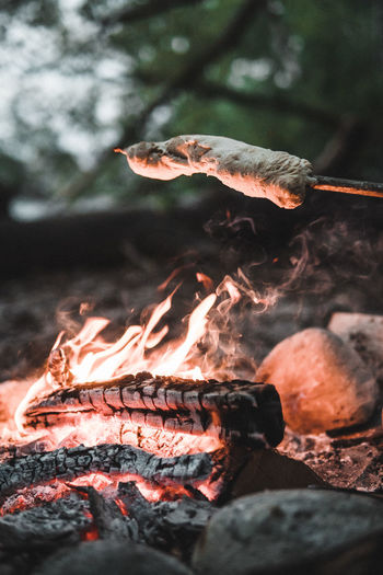 Evening campfire with friends Burning Fire Heat - Temperature Flame Fire - Natural Phenomenon Firewood Barbecue Nature Log No People Close-up Wood Bonfire Wood - Material Tree Selective Focus Barbecue Grill Smoke - Physical Structure Focus On Foreground Food Outdoors Campfire Friends