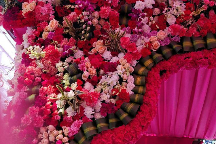 #natural #flowers Vaishno_mata Navmi Close-up Blooming