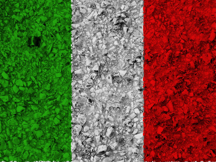 Italian flag Beauty In Nature Close-up Day Flower Fragility Freshness Full Frame Green Color Growth Italy Italy Flag Leaf Nation Nature No People Outdoors Plant Red Rome Rome Italy State Textured  Vibrant Color