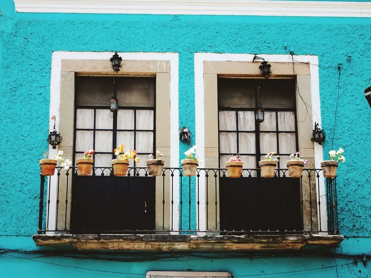 cute window :) Travel Journey Travel Destinations Travel Photography Beautiful Day Town TOWNSCAPE What I See Historical Building Colors Colorful Mexicolors Viaje Townhouse Window Window Frame Mexico Cute♡ City Walk Walking Around Beautiful ♥ Pipe - Tube Architecture Building Exterior Built Structure Side By Side