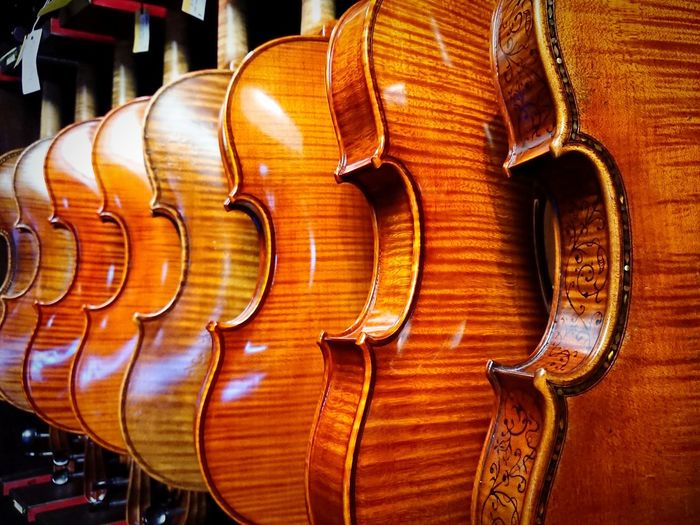 Violins arranged in row for sale