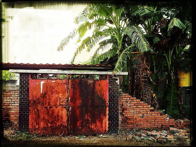 老眷村 紅磚牆
