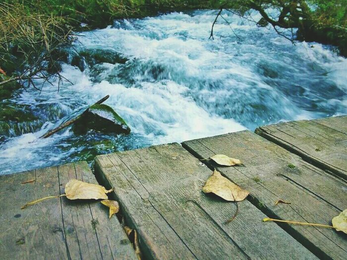 Water High Angle View Wood - Material Nature Outdoors No People Day Beauty In Nature Grass