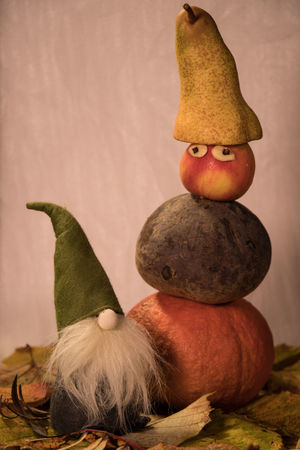 Winter is coming… Almonds Close-up Cloves Day Foam Foil Food Food And Drink Freshness Fruit Gnome Gourd Human Representation Indoors  Leaves No People Pear Pumpkin Sculpture Studio Shot Vegetable