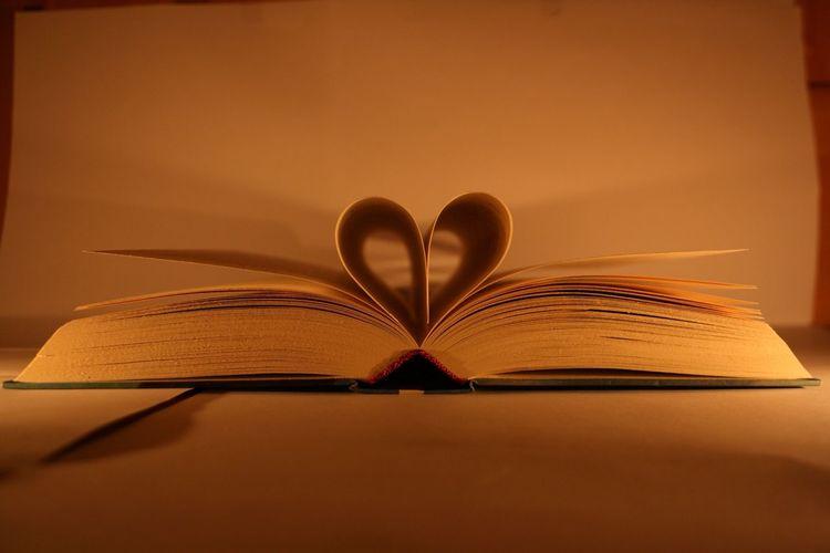 """""""Lesen ist Denken mit fremdem Gehirn""""-Arthur Schopenhauer Reading Books Lesen Just Thinking Dichter Und Denker"""