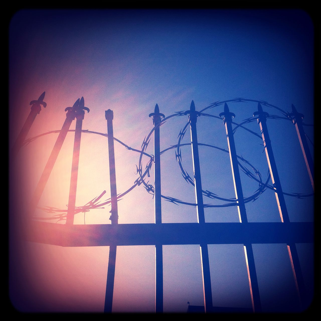 Low angle view of fence with razor wire