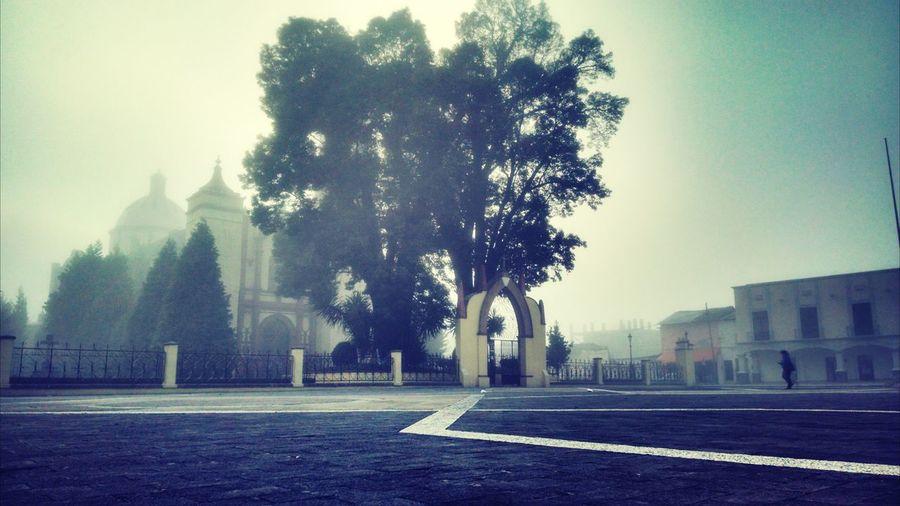 Lerma Neblina