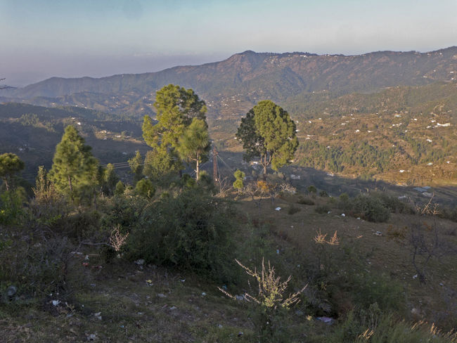 First sunbeams over Mukteshwar a village in Uttarakhand India Himalayas India Morning Light Mukteshwar Rural Beauty In Nature Day Growth Landscape Mountain Mountain Range Nature No People Outdoors Plant Scenics Sky Tranquil Scene Tranquility Tree Uttarakhand