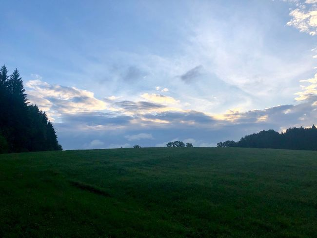 Early in the morning after a thunder at the night. Sky Plant Cloud - Sky Tranquil Scene Tranquility Beauty In Nature Field Landscape Nature Grass No People Day Land