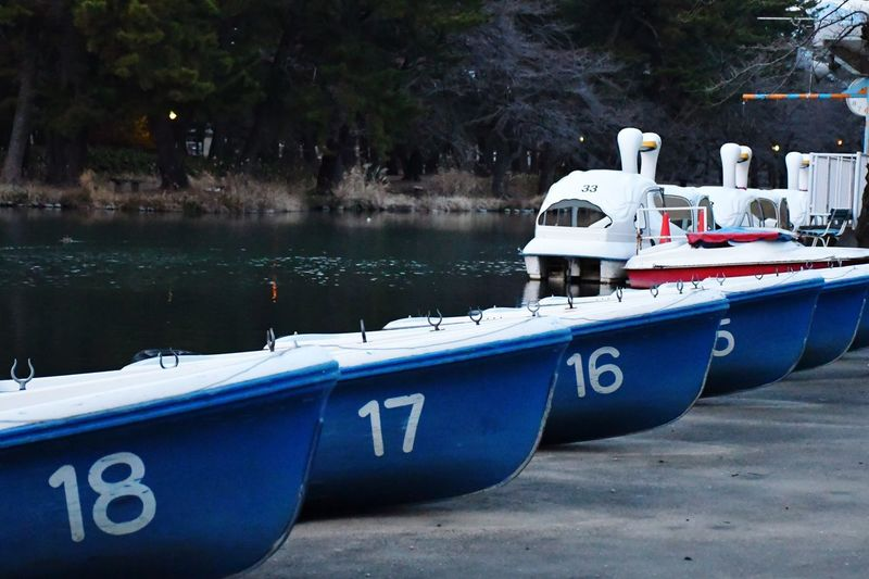 Boat On Lakeside In Maebashi Shikishima Park Eyeemphotography EyeEm Masterclass Water Nautical Vessel Transportation Moored Mode Of Transportation Nature No People Reflection Day Outdoors Blue Number Anchored The Art Of Street Photography
