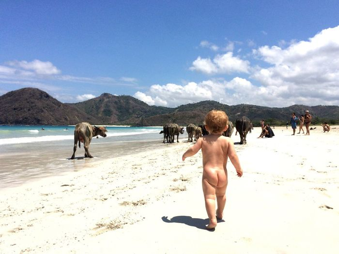 Rear view of toddler walking on beach against sky