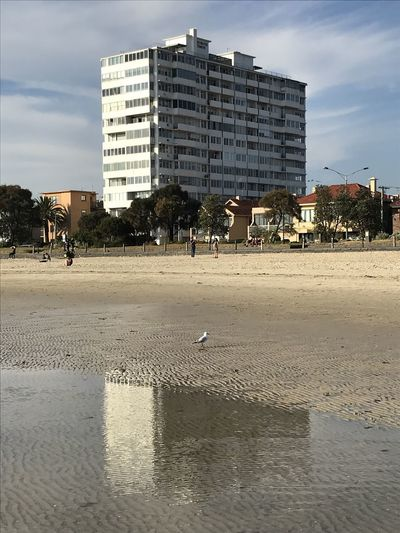 Building and its reflection in a tide puddle Built Structure Architecture Building Exterior City Sky Nature Day Sand Building Beach Water Land Bird Animal Themes Wet Animals In The Wild Animal Vertebrate Incidental People Outdoors Apartment St Kilda St Kilda Beach Seagull