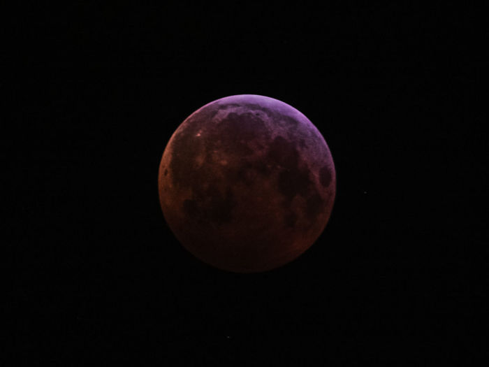 Space Astronomy Moon Night Sky Beauty In Nature Scenics - Nature Nature No People Circle Moon Surface Full Moon Geometric Shape Tranquility Planetary Moon Shape Tranquil Scene Space Exploration Exploration Copy Space Dark Outdoors Astrology Eclipse Blöoodmoon