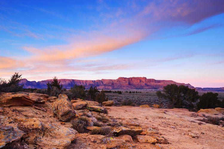 desert sunset Sunset Landscape Desert Desert Beauty Clouds Tree Sunset Mountain Desert Sky Landscape Cloud - Sky