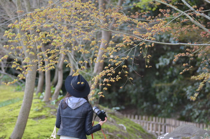 EyeEm 2015 Nikon D5200 Japan Ritsurin Garden 栗林公園