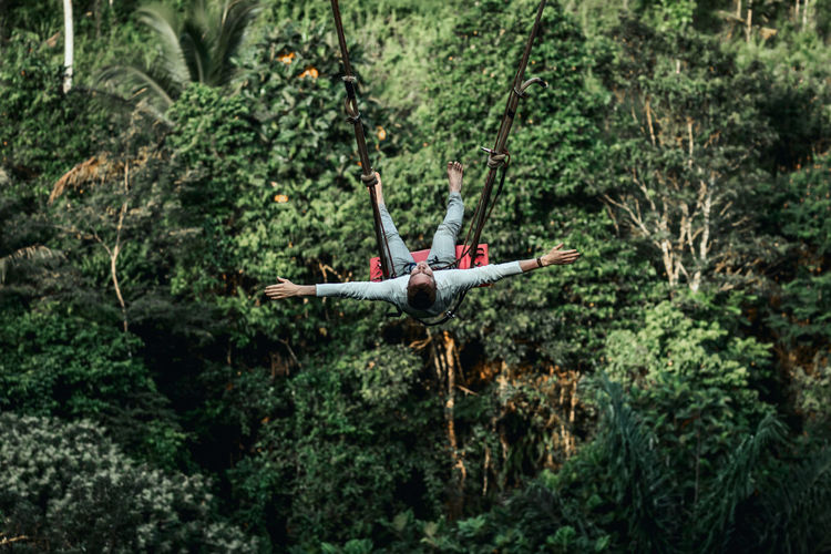 Airplane flying over trees in forest
